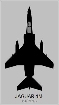 Jaguar 1M